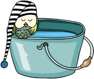 Owl sleeping on bucket with water Stock Image