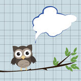 Owl with speech bubble. /Little brown owl on branch with speech bubble sitting on branch Stock Image