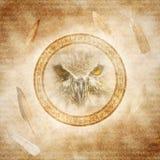 Owl Spirit Fotografía de archivo