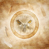 Owl Spirit stock photography