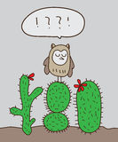 Owl stand cactus Stock Images