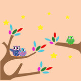 Owl Star Fun Design Vector Royaltyfri Fotografi