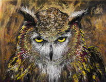 Owl staring intently charcoal drawing. A horned owl staring intently.  Charcoal original art Royalty Free Stock Image