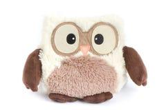 Owl Stuffed Animal Fotografering för Bildbyråer