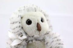 Owl Stuffed Animal Arkivfoton