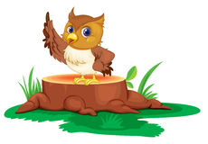 An owl on a stump Royalty Free Stock Images