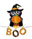 Owl in a suit on a Halloween with pumpkin sits on a rope. With Letters and an inscription boo hang on clothespins. Vector. Festive garland. Greeting card or Stock Image