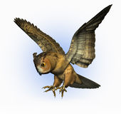 Owl Swooping Down 2 - includes clipping path Stock Photography
