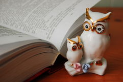 The owl is a symbol of knowledge. The owl is portrayed as a symbol of knowledge and science Stock Image