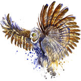 Owl T-shirt graphics, snowy owl illustration with splash watercolor textured background. illustration watercolor snowy owl for fa Stock Images