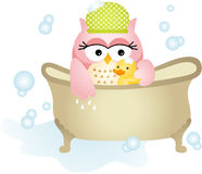 Owl Taking a Bath Royalty Free Stock Photos