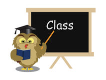 Owl taking class Royalty Free Stock Images
