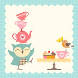 Owl tea time Royalty Free Stock Image