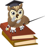 Owl teacher Royalty Free Stock Photography