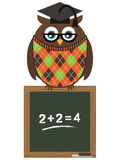 Owl teacher Royalty Free Stock Photo
