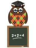 Owl teacher Royalty Free Stock Photo