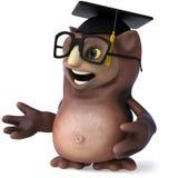 Owl teacher Royalty Free Stock Images