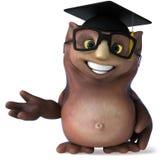 Owl teacher Stock Image