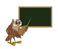 Owl - teacher Stock Photography