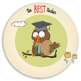 Owl Teacher Stock Images