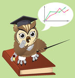 Owl teacher Royalty Free Stock Images