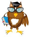 Owl teacher with book Stock Image