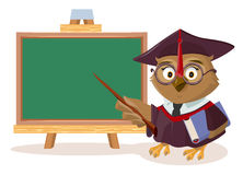 Owl teacher with book and pointer stands near blackboard Royalty Free Stock Photos