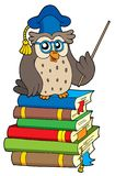 Owl teacher and books Stock Images