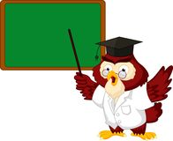 Owl teacher cartoon with board Royalty Free Stock Photos