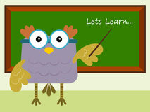 Owl teacher Royalty Free Stock Image