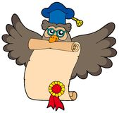 Owl teacher with diploma Royalty Free Stock Photography
