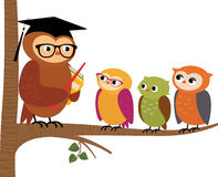 Owl teacher and his students Stock Images