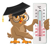 Owl teacher holding thermometer. Indoor thermometer Celsius Stock Photography