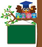 Owl teacher and owlets theme image 3 Royalty Free Stock Photos