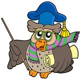 Owl teacher with parchment. Vector illustration Stock Image