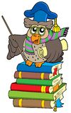 Owl teacher with parchment on books Royalty Free Stock Photos