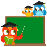 Owl teacher pointing at chalkboard and students Royalty Free Stock Image