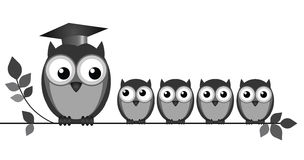 Owl Teacher. And pupils on branch isolated on white background royalty free illustration