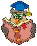 Owl teacher reading book. Vector illustration Stock Images