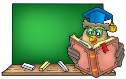 Owl teacher reading book on blackboard Royalty Free Stock Images
