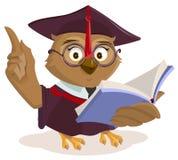 Owl teacher reading book Stock Images
