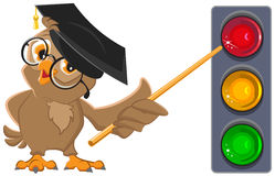 Owl Teacher shows pointer on lights. Traffic light education Royalty Free Stock Photo