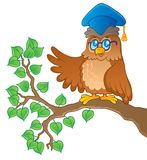 Owl teacher theme image 1 Royalty Free Stock Photography