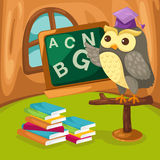 Owl teaching. Illustration of cartoon owl teaching in the room Stock Images
