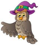 Owl theme image 2 Royalty Free Stock Photos