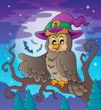 Owl theme image 3 Stock Photography