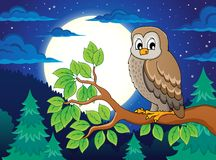 Owl topic image 4 Stock Photography