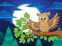 Owl topic image 3 Royalty Free Stock Photo