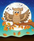 Owl topic image 5 Stock Photos