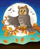 Owl topic image 7 Stock Photography